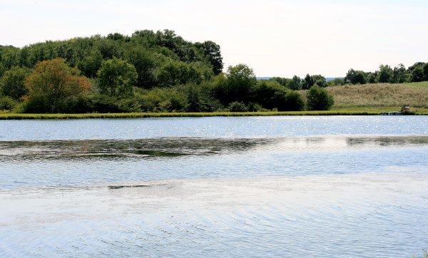 Lake #2